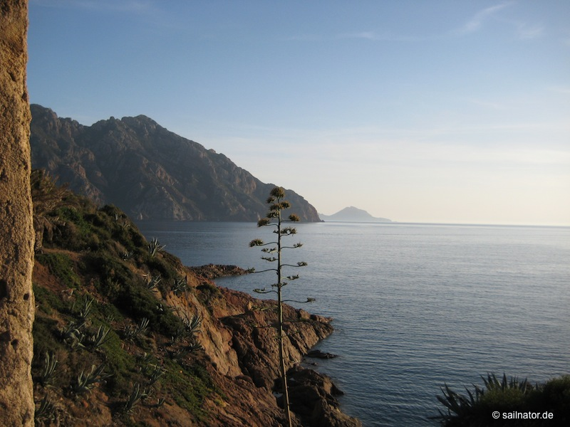 Golfo die Girolata